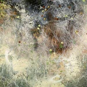 gallerySlides06