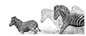 jamie-boots-zebra