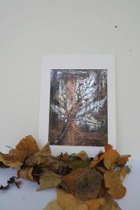 leaf-v2-new-jpg-new-size