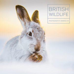 2018 British Wildlife Photography Awards @ Nature in Art