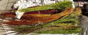 Willow Garden Structures - Helen Lomberg @ Nature in Art