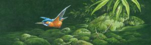 Kingfishers & Riverbeds in Acrylic - Martin Rumary @ Nature in Art