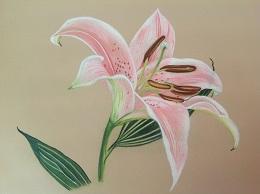 """Stargazer lily"" by Ruth."