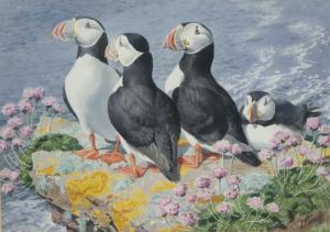 Charles Tunnicliffe (1901-1979) (British). Skomer Afternoon - Puffins. Watercolour.