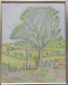 """Walk on the Footpath"" in coloured pencils by Tony"