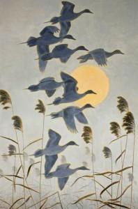 Peter Markham Scott (1909-1989) (British). Pintail Pursuit at Sunrise. Oil. 1987.